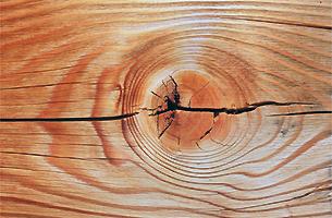 Holzoberflächen ausbessern