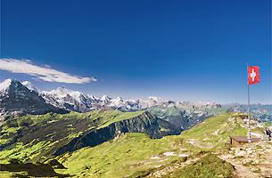 Bearbeitung Holzoberflächen ganze Schweiz